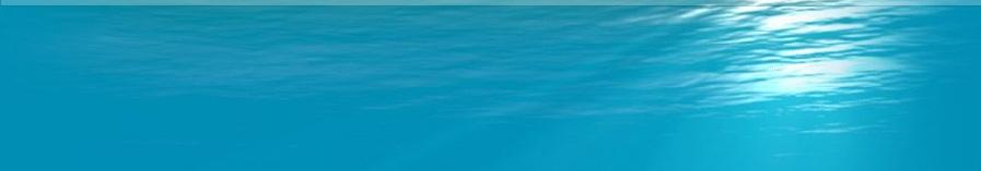 Custom Swimming Pool Builder Pool Liner Replacement